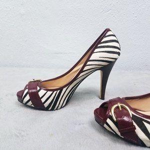Steve Madden Women's Leather Zebra Heels Shoes